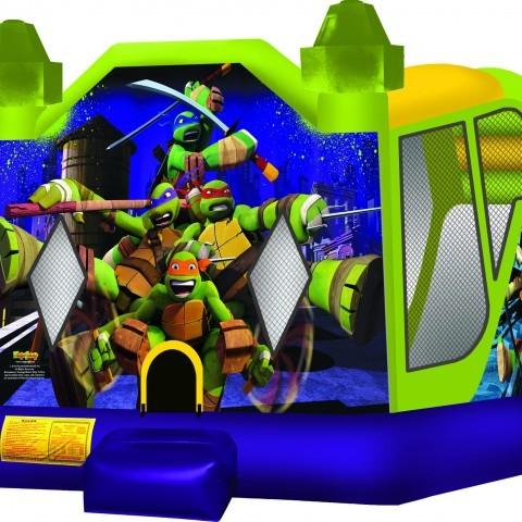 Ninja Turtle 3 in 1